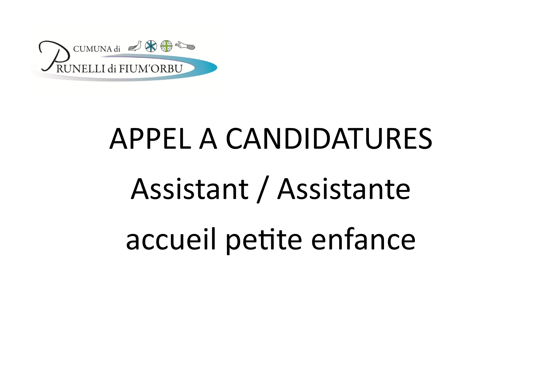 appel a candidatures   assistante accueil